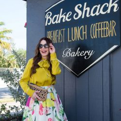 Shireen's Spotlight: Bake Shack