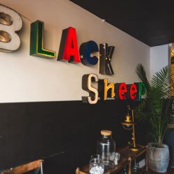 Shireen's Spotlight: Black Sheep