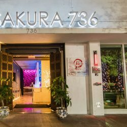 Shireen's Spotlight: Sakura 736